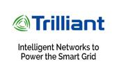 7. Trilliant168x95